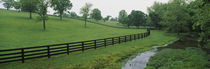 Fence in a field, Woodford County, Kentucky, USA von Panoramic Images