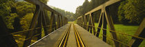 Railroad tracks passing through a bridge, Germany von Panoramic Images