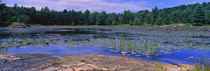Acadia National Park, Mount Desert Island, Hancock County, Maine, USA by Panoramic Images