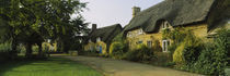 Cottage in a village, Hidcote Bartrim, Gloucestershire, England by Panoramic Images