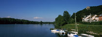Boats moored at the lakeside, Greifenstein, Lower Austria, Austria by Panoramic Images