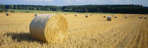 Bales of Hay Southern Germany von Panoramic Images