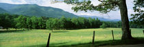 Great Smoky Mountains National Park, Tennessee, USA by Panoramic Images