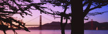 Suspension Bridge Over Water, Golden Gate Bridge, San Francisco, California, USA von Panoramic Images