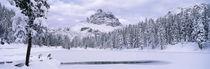 Tre Cime Di Lavaredo, Dolomites, Cadore, Province of Belluno, Veneto, Italy by Panoramic Images