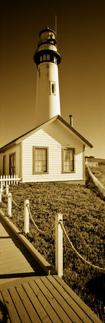 Building in front of a lighthouse, Pigeon Point Lighthouse, California, USA by Panoramic Images