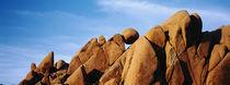 Close-up of rocks, Mojave Desert, Joshua Tree National Monument, California, USA by Panoramic Images