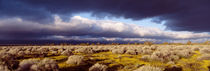 Clouds, Mojave Desert, California, USA by Panoramic Images