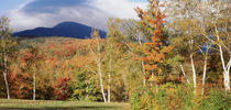 White Mountain National Forest, Bartlett, New Hampshire, USA by Panoramic Images