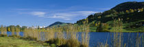 Lake at a hillside, Lake Huttensee, Canton, Zurich, Switzerland von Panoramic Images