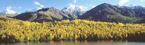 Long Lake And Chugach Mountains, Alaska, USA von Panoramic Images