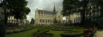 Garden in a church, Eglise Notre-Dame du Sablon, Brussels, Belgium by Panoramic Images