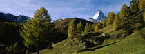 Low angle view of a mountain peak, Matterhorn, Valais, Switzerland by Panoramic Images