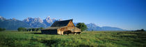 John Moulton Barn in field with bison, Grand Teton National Park, Wyoming, USA by Panoramic Images