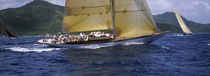 Yacht racing in the sea, Antigua, Antigua and Barbuda von Panoramic Images