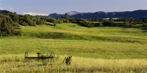 Agricultural equipment in a field, Pikes Peak, Larkspur, Colorado, USA von Panoramic Images