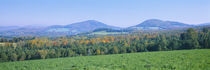Trees with a mountain range in the background, Northeast Kingdom, Vermont, USA by Panoramic Images