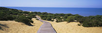 Donana National Park, Huelva Province, Spain by Panoramic Images