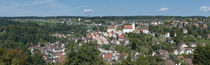 Houses in a town, Altensteig, Schwarzwald, Calw, Baden-Württemberg, Germany von Panoramic Images