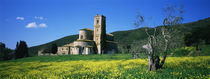 Monastery in a field, San Antimo Monastery, Tuscany, Italy by Panoramic Images