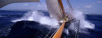 Yacht Race, Caribbean von Panoramic Images
