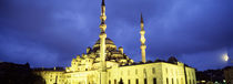 Yeni Mosque, Istanbul, Turkey by Panoramic Images