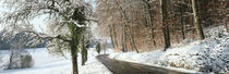 Road in snowy landscape canton Zurich Switzerland by Panoramic Images