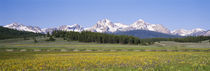 Sawtooth National Recreation Area, Stanley, Idaho, USA by Panoramic Images