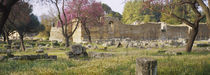 Ruins of a building, Ancient Olympia, Peloponnese, Greece by Panoramic Images