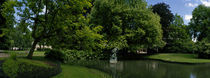 Trees in a park, Queen Astrid Park, Bruges, West Flanders, Belgium von Panoramic Images