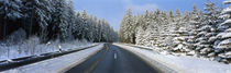 Road, Hochwald, Germany by Panoramic Images