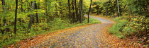 Peacham, Caledonia County, Vermont, USA by Panoramic Images
