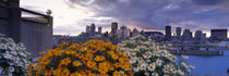 Montreal, Quebec, Canada 2010 by Panoramic Images