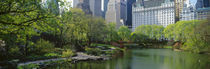 Panorama Print - Central Park New York City, New York State, USA von Panoramic Images