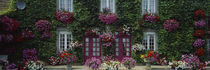 Flowers Breton Home Brittany France von Panoramic Images