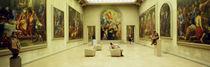 Beaux Arts Museum Lyon France von Panoramic Images