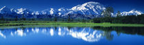 Mt McKinley and Wonder Lake Denali National Park AK by Panoramic Images
