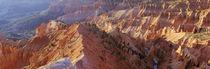 Amphitheater, Cedar Breaks National Monument, Utah, USA by Panoramic Images