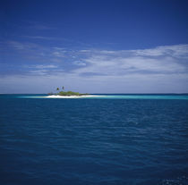 Island in the sea, Tuamotu Archipelago, French Polynesia by Panoramic Images