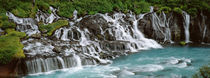 Waterfall In A Forest, Hraunfoss Waterfall, Iceland by Panoramic Images