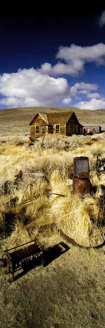 House in a ghost town, Bodie Ghost Town, Mono County, California, USA by Panoramic Images
