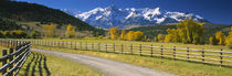 Fence along a road, Sneffels Range, Colorado, USA von Panoramic Images