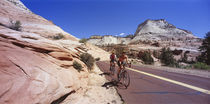 Two people cycling on the road, Zion National Park, Utah, USA by Panoramic Images