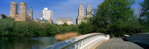 Bow Bridge, Central Park, NYC, New York City, New York State, USA von Panoramic Images