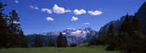 Alpine meadow in front of mountains, Dachstein Mountains, Upper Austria, Austria by Panoramic Images