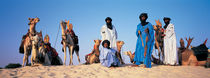 Tuareg Camel Riders, Mali, Africa by Panoramic Images
