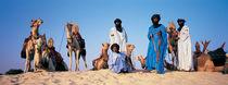 Tuareg Camel Riders, Mali, Africa von Panoramic Images