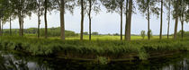 Channel passing through a landscape from Brugge to Damme, Belgium von Panoramic Images