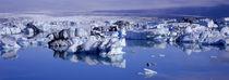 Breidamerkursandur, Jokulsarlon Glacial Lagoon, Vatnajokull, Iceland by Panoramic Images