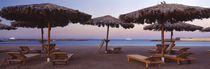 Lounge chairs with sunshades on the beach, Hilton Resort, Hurghada, Egypt by Panoramic Images